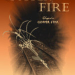 Blog tour for Copper Fire by Suzanne Fisher