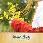June Bug by Chris Fabry ~ Tracy's Take