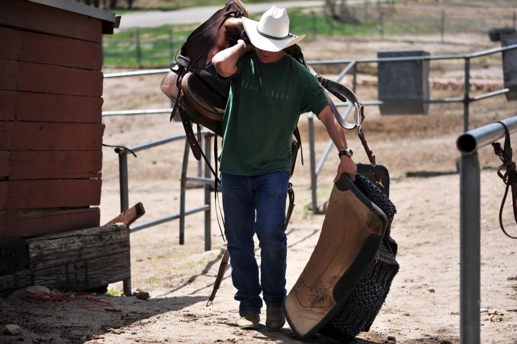 cowboy-646639_1920