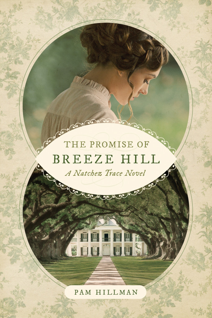 the-promise-of-breeze-hill